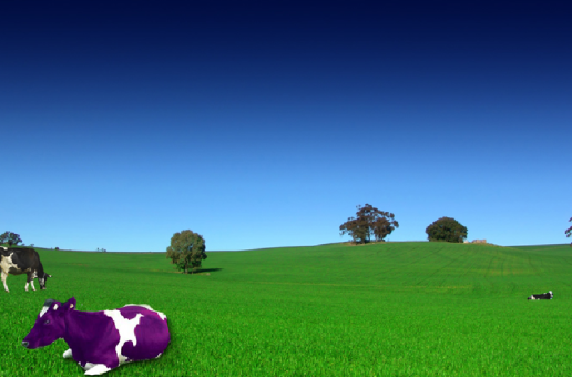 9 Purple Cows of Film Music